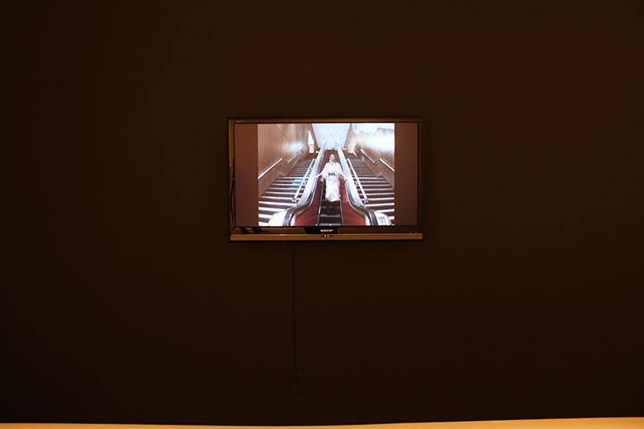 self portrait in alterNation (installation view, Blackwood Gallery)