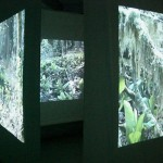 diary of a nomad documentation 7 - video installation by contemporary Native Canadian artist Jude Norris